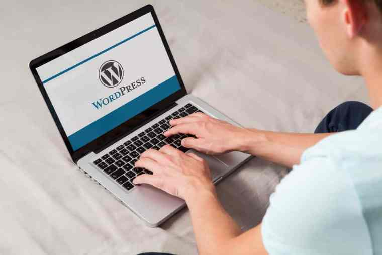 skills to learn wordpress development