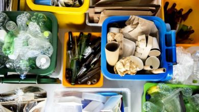 Photo of Are You Confused about Recycling? Here's What You Need to Know