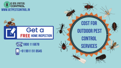 Photo of Cost for Outdoor Pest Control Services in Noida