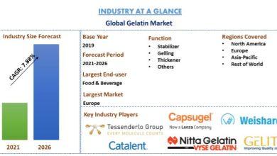 Photo of Gelatin Market: Current Analysis and Forecast (2019-2026)