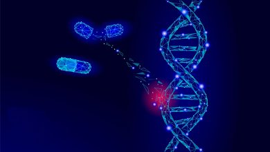 Photo of Gene Therapy Market Current Analysis and Forecast 2020-2027