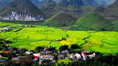 Photo of TOP BEST 8 THINGS TO DO IN HA GIANG AND NORTH VIETNAM