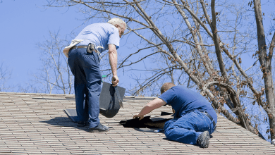 Photo of 7 interesting facts about tile roof repair Vaughan