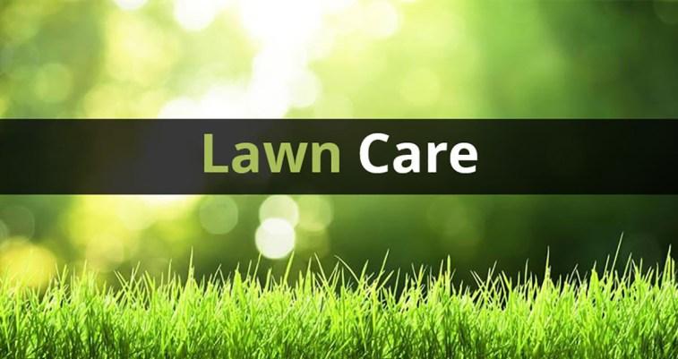 professional lawn care service North Tampa