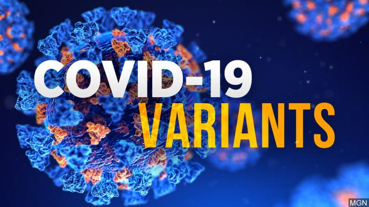 A Guide On The COVID-19 Variants