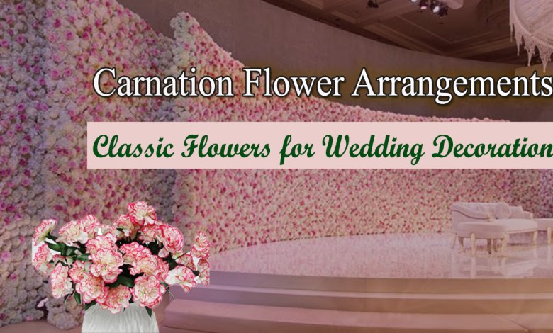 cCarnation Flowers- Classic Flowers for Wedding Decoration