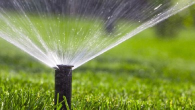 Photo of Nine good reasons to hire a professional sprinkler installer