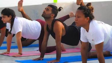Photo of Yoga Asanas Postures for Beginner