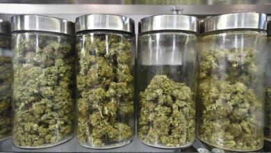 Photo of Find the best medical marijuana dispensary online in Mississippi