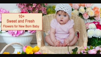 Photo of 10+ Sweet and Fresh Flowers for New Born Baby