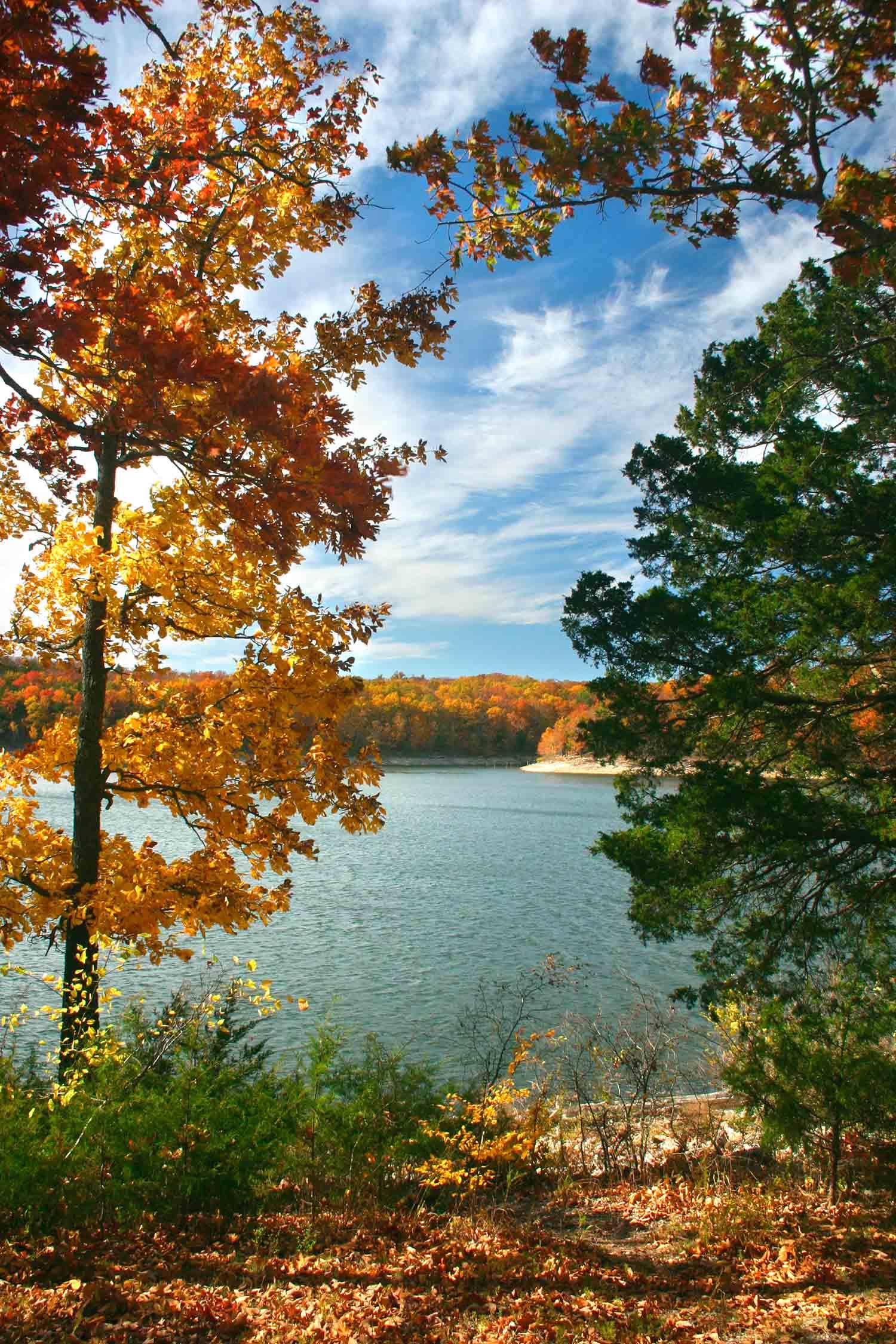 Lake Ozark Missouri Fall Autumn Leaves