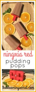 NingXia Red Pudding Pop Recipe | The Blooming Carrot
