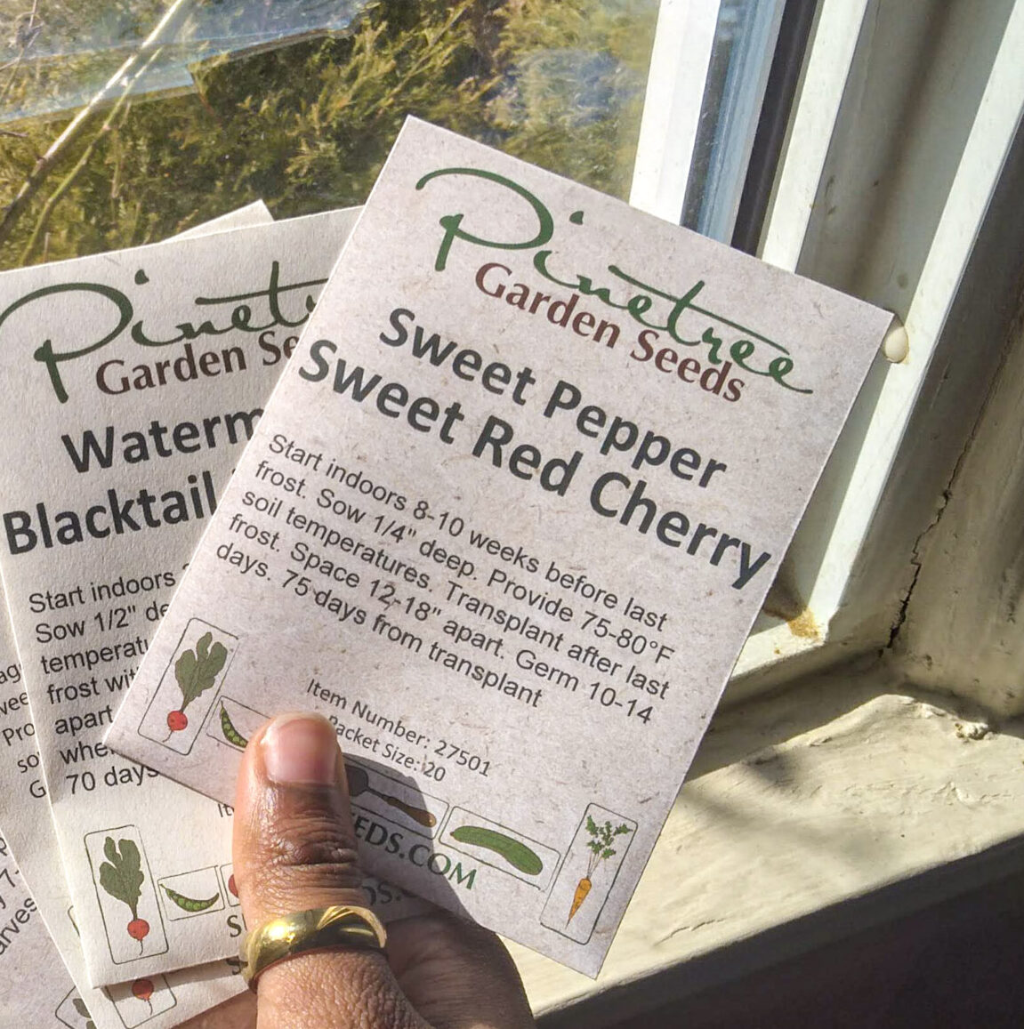 Hand holding seed packet with planting  directions on it