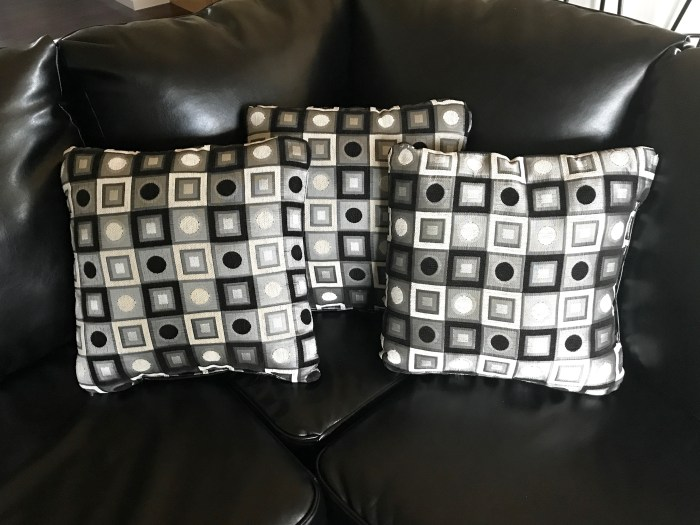 Pillows that came with couch
