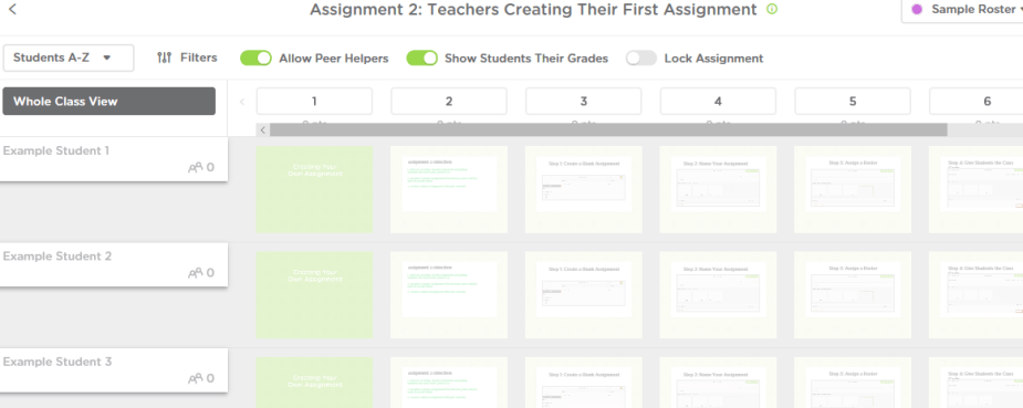classkick assignment view.PNG