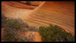 Wave of sandstone, Coyote Buttes South, Paria Plateau