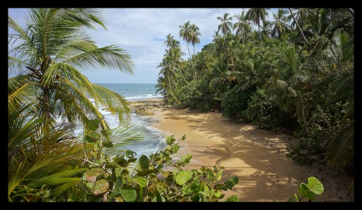 Gandoca Manzanillo beach