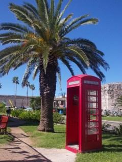 tropical telephone box