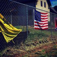 Landslide-Trump-Zombie-Dreams-Bob Davis Podcast 848