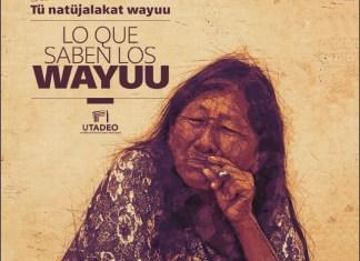 What the Wayuu Know