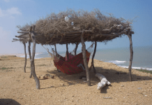 Human Rights Watch draws attention to hunger crisis in Wayuu community