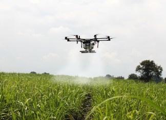 Female FARC, drones