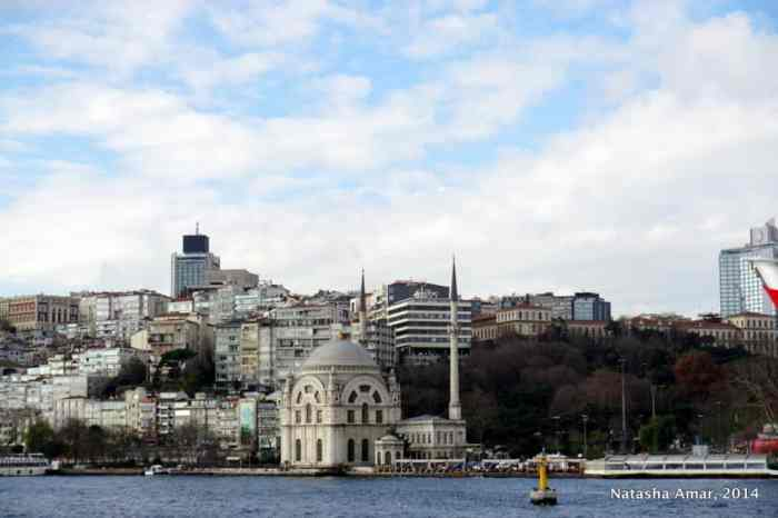 Dolmabahce Mosque bosphorus cruise istanbul