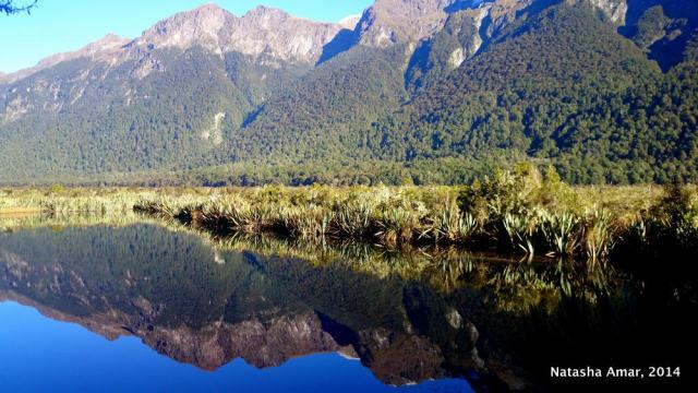 Mirror Lakes- milford sound pictures