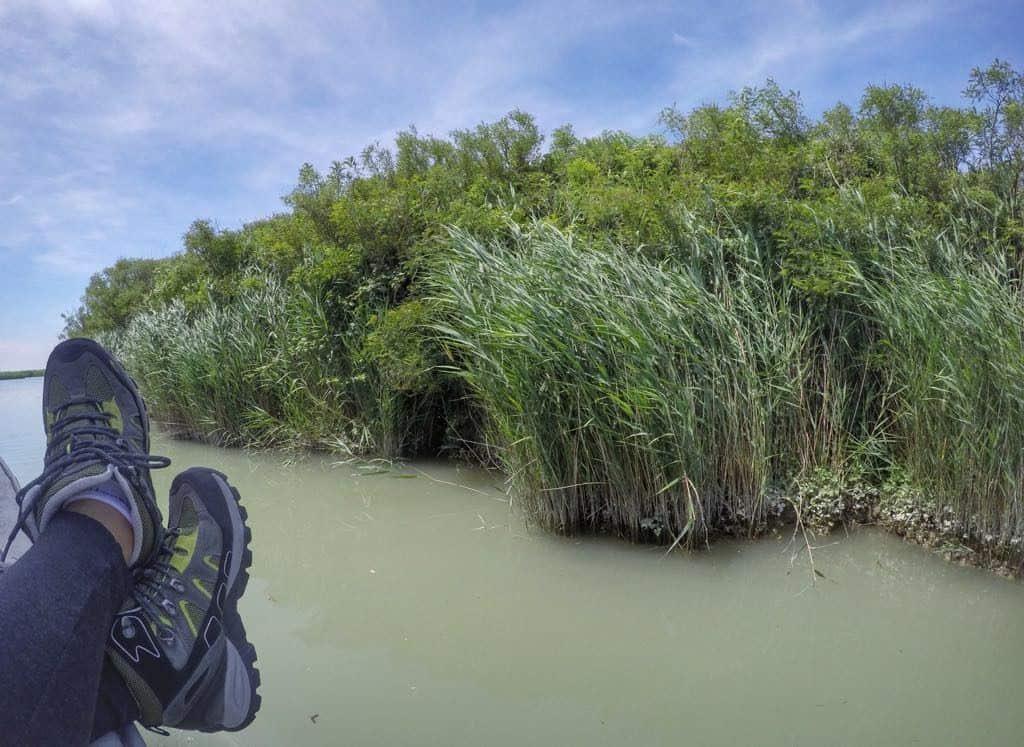 Po Delta Adventures Nature & Wildlife in Emilia Romagna