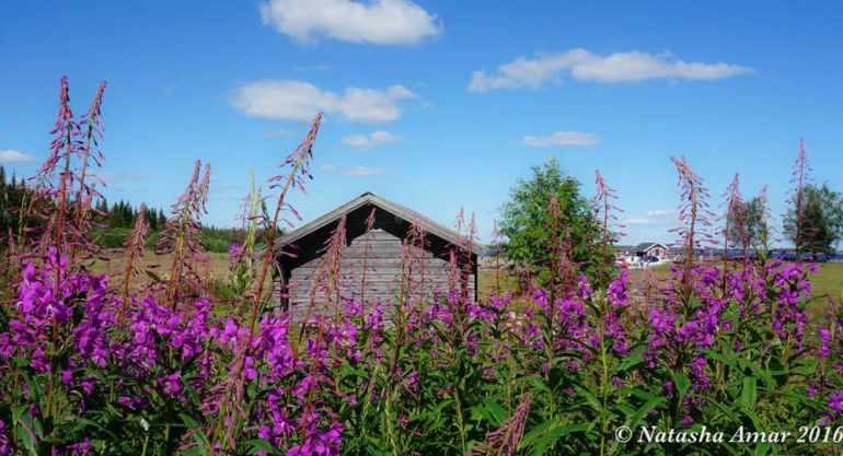 Skelleftea in Swedish Lapland