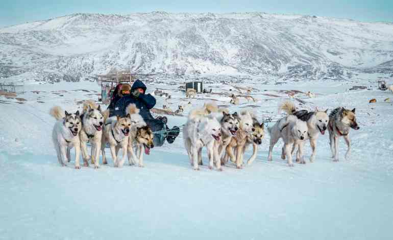 What to do in Ilulissat Greenland: From seeing icebergs and the Northern Lights to dogsledding, these are the best things to do in Ilulissat, Greenland.