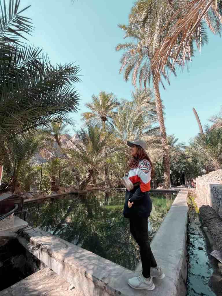 Wadi Shees Nature Trail freshwater pond