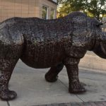 Rhino getting ready to cross Main Street in Downtown Meridian