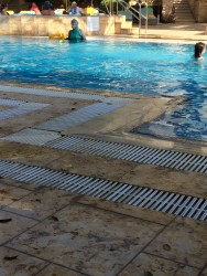 it was nice to see all sorts of families enjoying the pool. with the advent of the burkini muslim women, it was nice to see so many women enjoying the water, too!