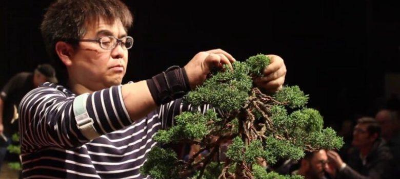 Juniper bonsai demo by Masayuki Fujikawa