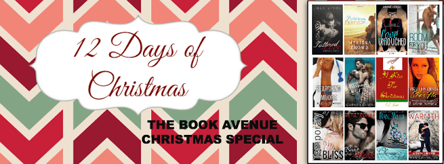 12 Days of Christmas featuring A Special Holiday Scene of Brody & Kacie from Room For You by Beth Ehemann (excerpt and giveaways)