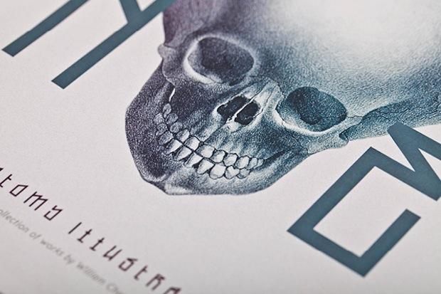 Bone: Anatomy illustration cover close up