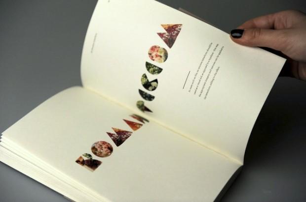Floriography - Emotive Letterforms typography book design inspiration