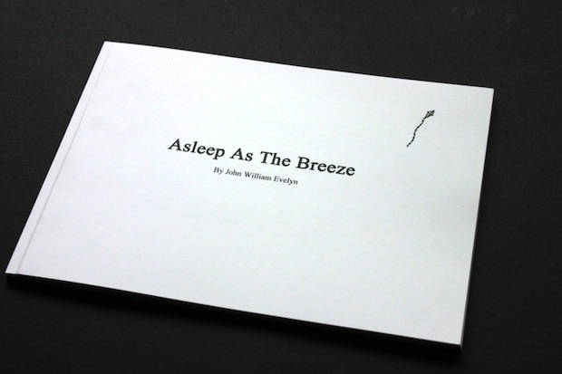 Asleep as the Breeze illustrated book design inspiration