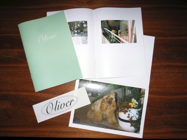 photography zine design inspiration