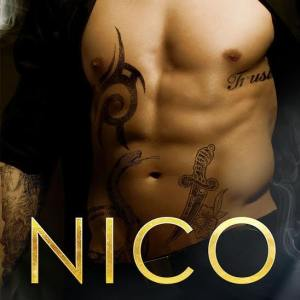 Nico by Sarah Castille: Review