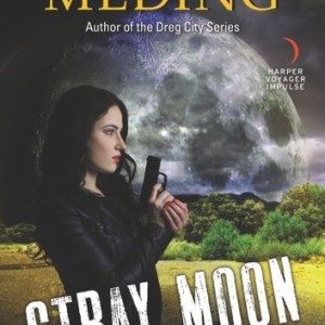 Stray Moon by Kelly Meding