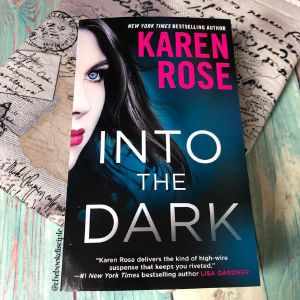Into the Dark by Karen Rose