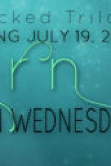 {Waiting on Wednesday} Torn (A Wicked Saga #2) by Jennifer L. Armentrout