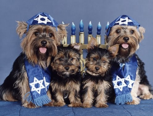 Jews: Just Like Dogs!