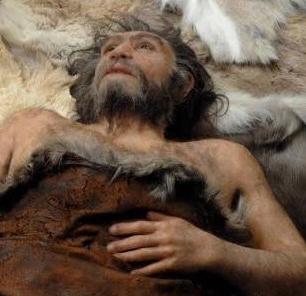 Neanderthal Brain: A Phenomenon