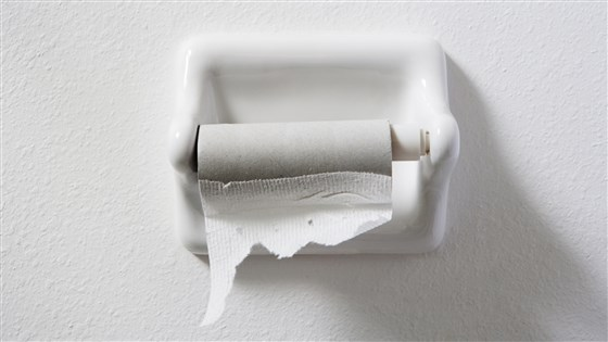 You've Ran Out of Toilet Paper: What Now?