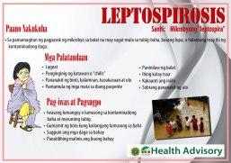 Leptospirosis1 wzd
