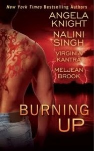 Review – Burning Up Anthology