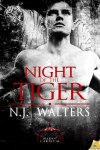 Cover for Night of the Tiger by NJ Walter